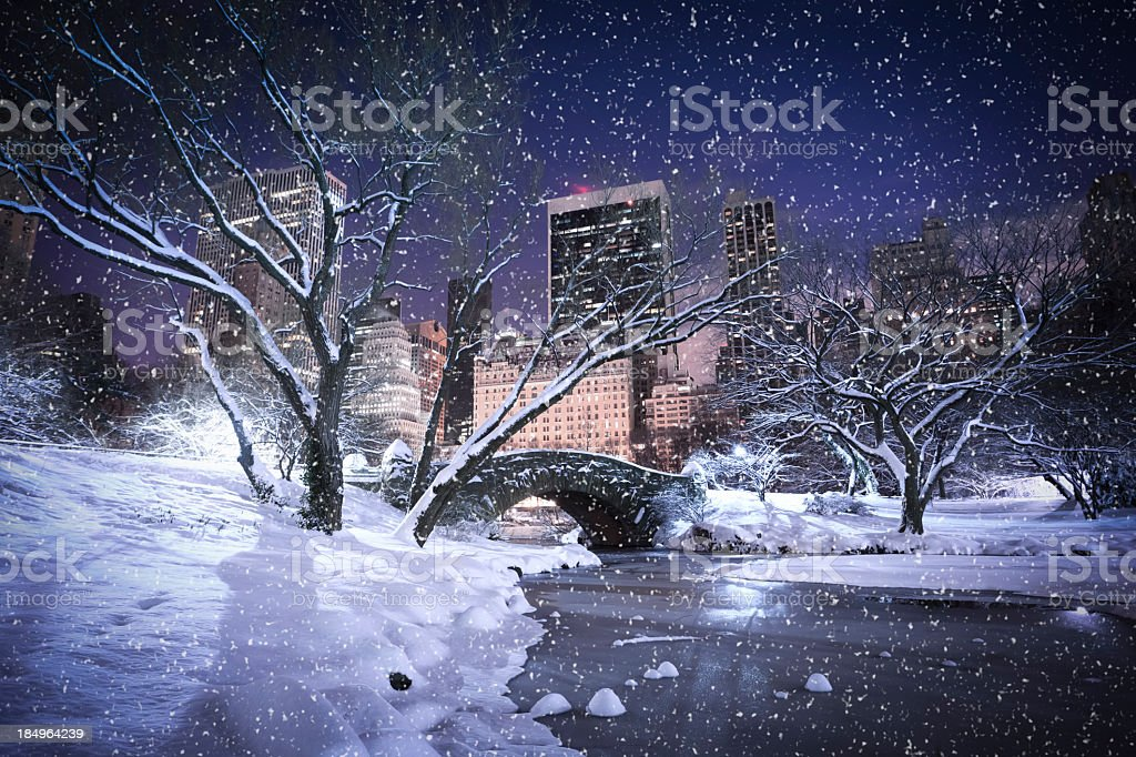 Snowing at Central Park stock photo