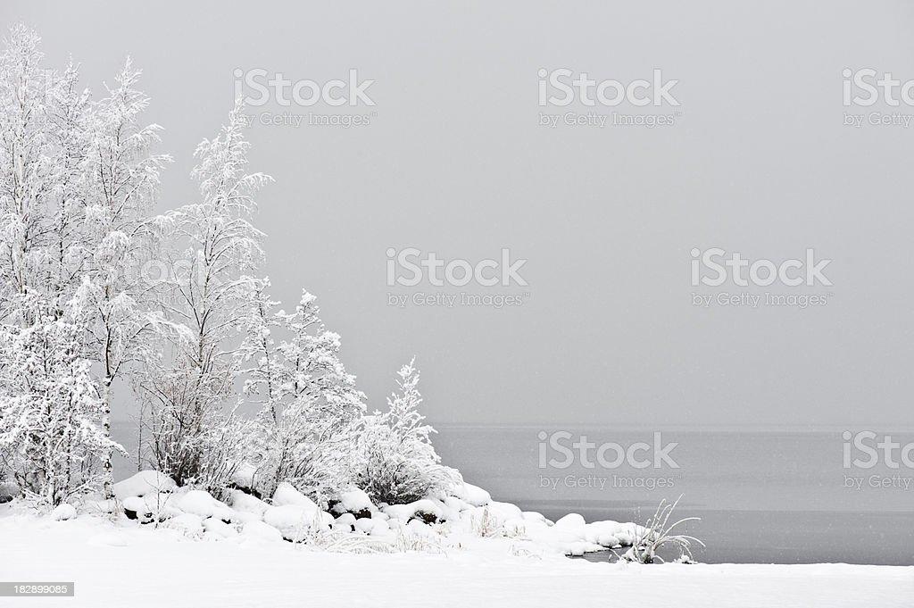 Snowing at the lake stock photo
