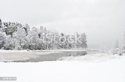 Winter landscape. Freshly fallen snow covering lake shore and trees.