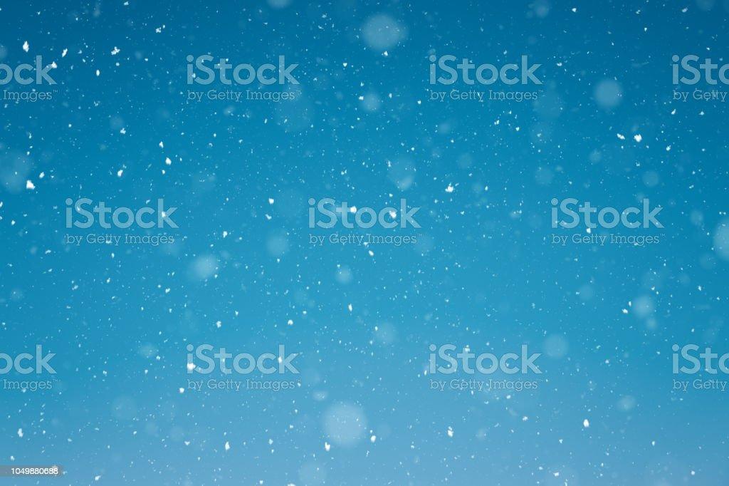 Fond de neige - Photo
