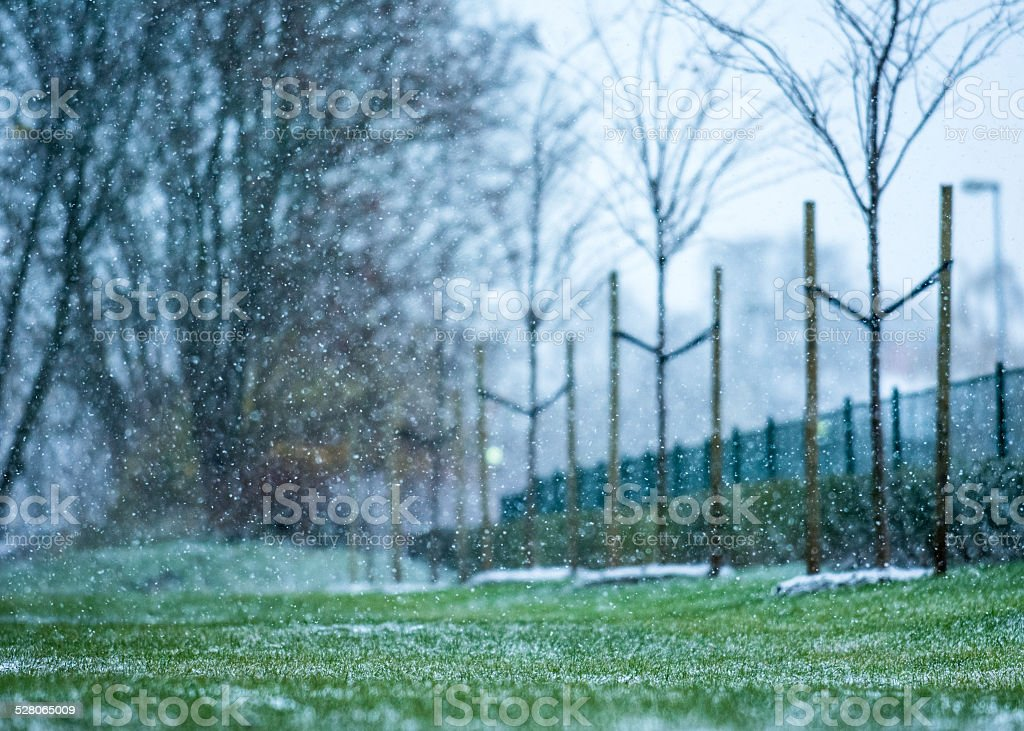 Snowing first time this winter royalty-free stock photo