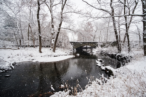 Snowing over the trees, river and bridge