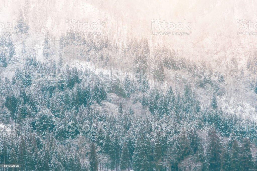 Snowing time at Shirakawago landscape, Japan stock photo