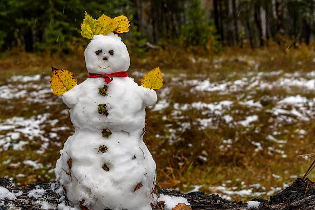 snowman first snow forest autumn - es schneit text stock-fotos und bilder