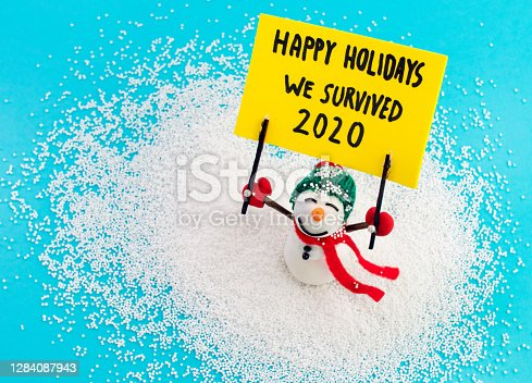 Snowman holding advertisment banner background with message Happy holidays we survived 2020