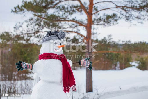 1056829102 istock photo snowman in red scarf in forest 1151336439
