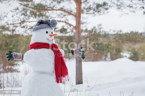 1056829102 istock photo snowman in red scarf in forest 1162144621
