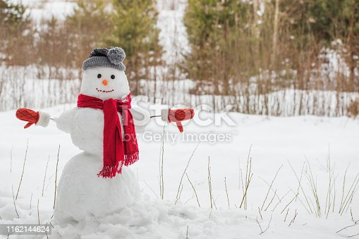 1056829102 istock photo snowman in red scarf in forest 1162144624