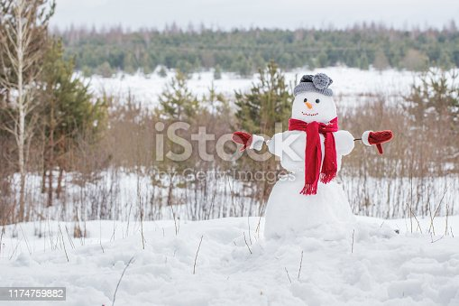 1056829102 istock photo snowman in red scarf in forest 1174759882
