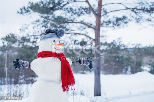 1056829102 istock photo snowman in red scarf in forest 1174759891