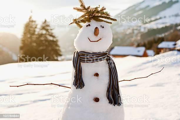 Photo of Snowman in snowy field