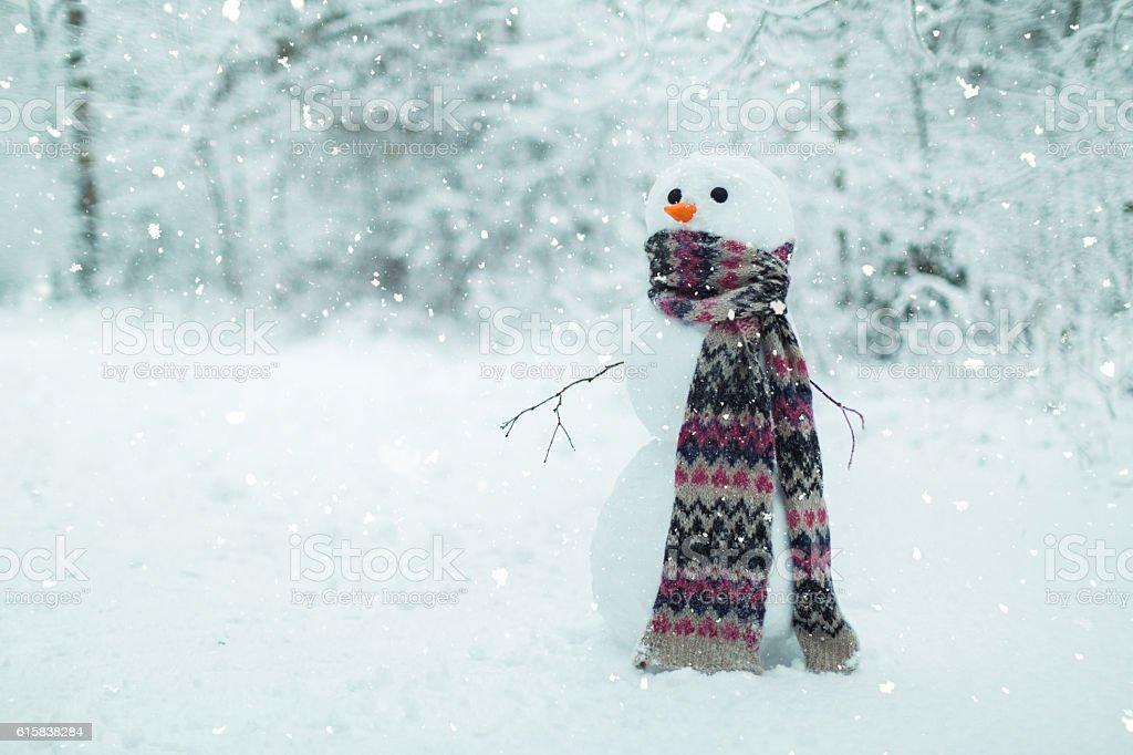 Boneco de Neve na floresta - foto de acervo