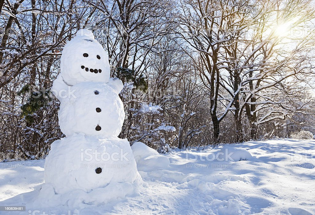 Snow-man in winter forest covered by hard snow royalty-free stock photo