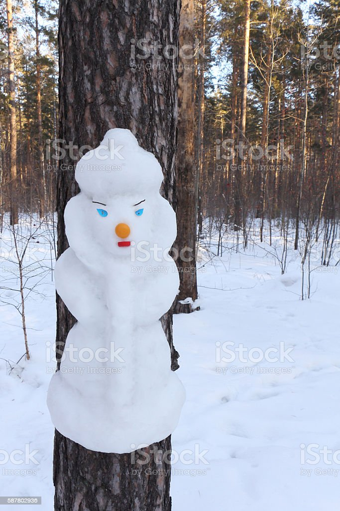 Snowman on a pine  in the form of  Snow Maiden stock photo