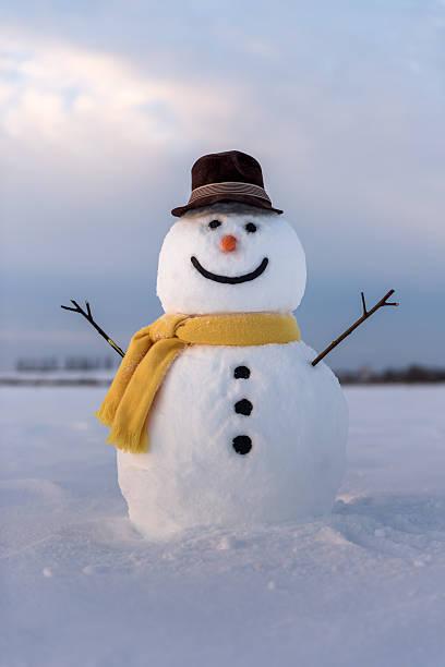 Snowman picture id628222906?b=1&k=6&m=628222906&s=612x612&w=0&h=s7lzw3b lhfkqoq6fnlljdhbcyo2yhorv66gysl897m=