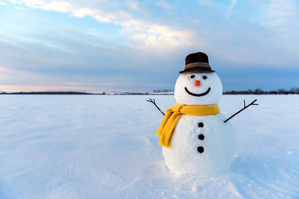 Snowman picture id629653980?b=1&k=6&m=629653980&s=612x612&w=0&h=lwnuhkio ap4u5colmtwyerpth2b2fajx14qlolk6hc=