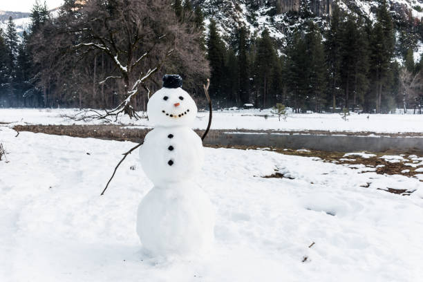snowman - dally stock pictures, royalty-free photos & images