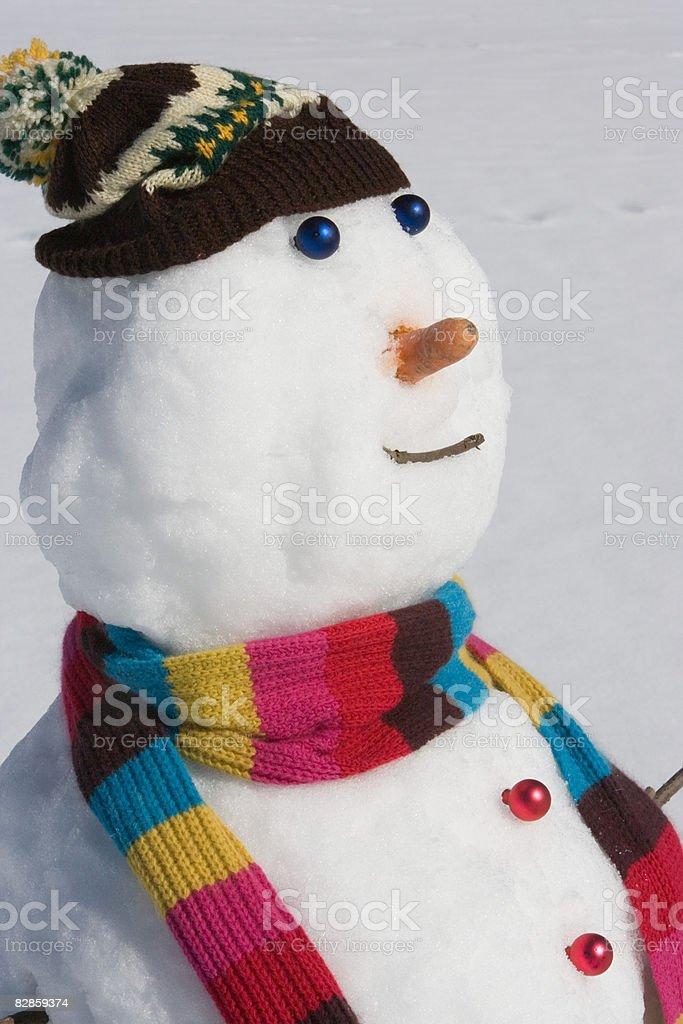 A snowman royalty free stockfoto