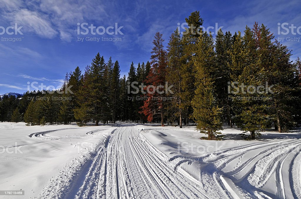 Snowmobile Trail along Greys River, Wyoming royalty-free stock photo