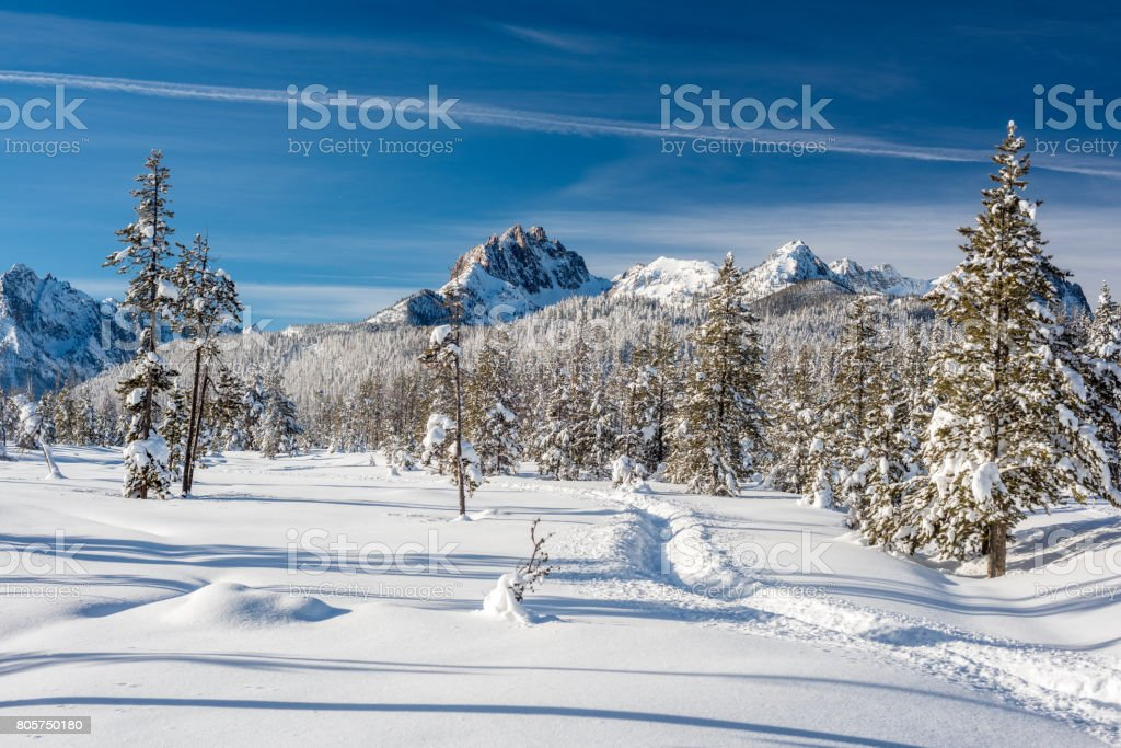 Snowmobile trail leads into open snow in a meadow stock photo