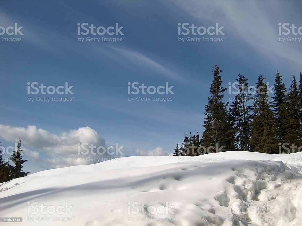 Snow-Reach For The Sky royalty-free stock photo