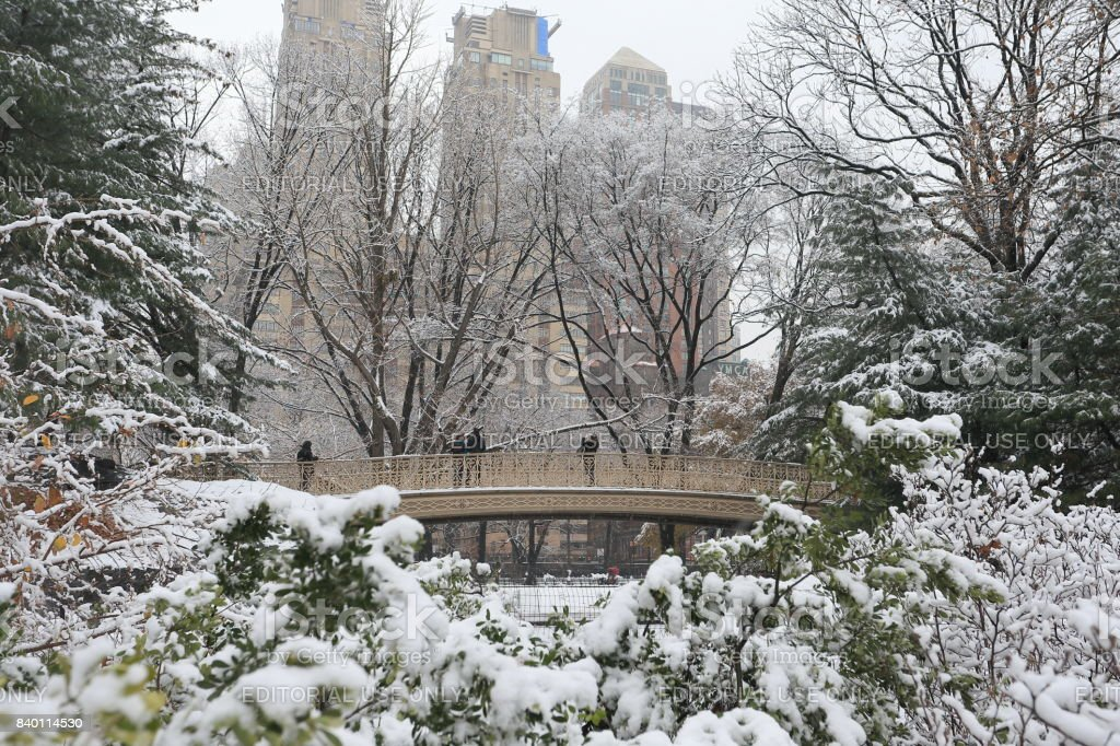 Snowscape in Central Park in Manhattan stock photo