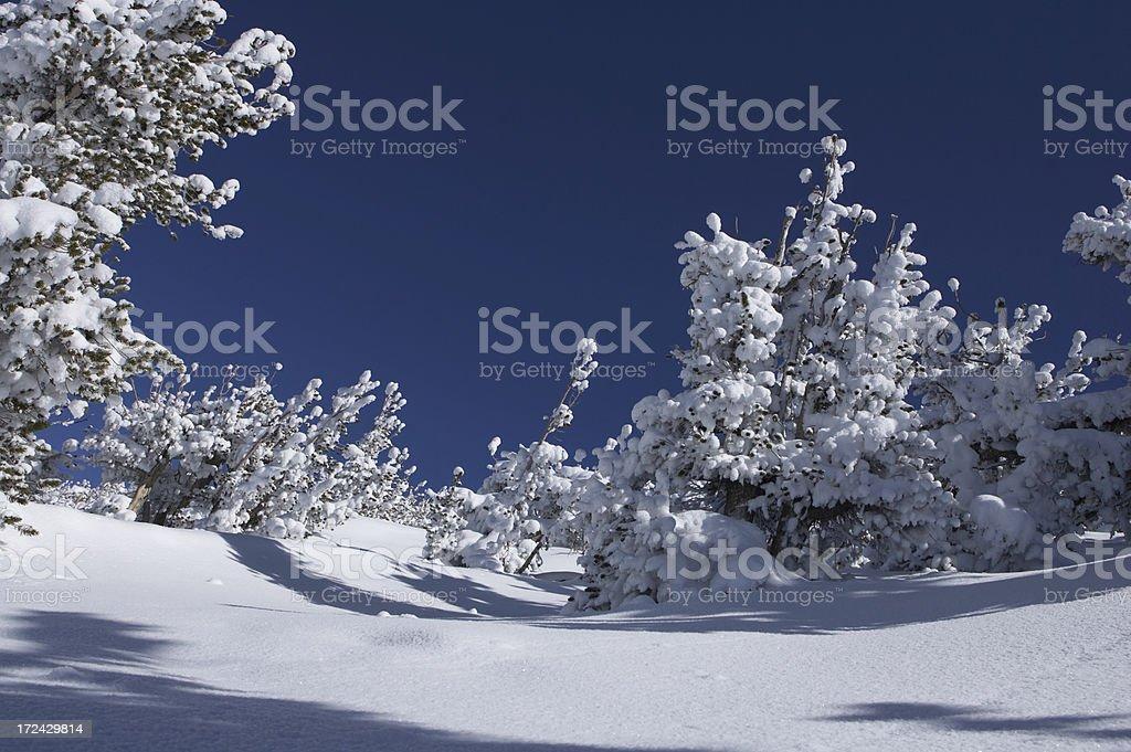snowscape stock photo