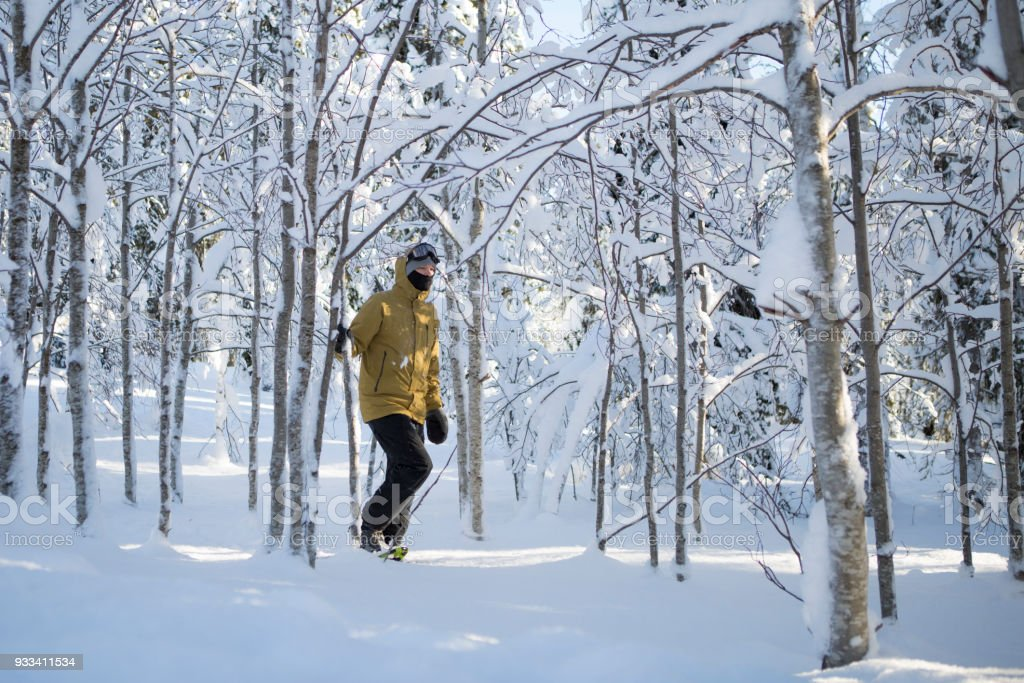 Snowshoe adventure stock photo