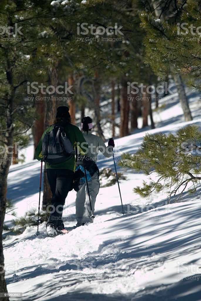 Snowshoe Couple royalty-free stock photo