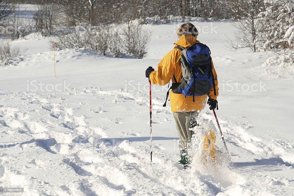 snowshoe hicking stock photo