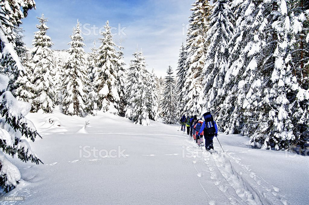 Snowshoe Hiking through Forest stock photo