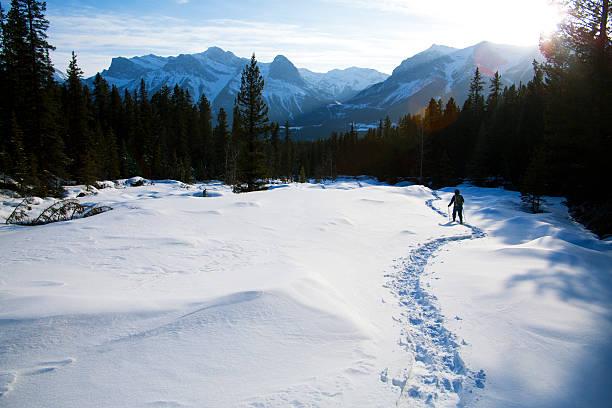 raquette à neige au soleil - raquette photos et images de collection