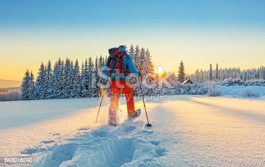 istock Snowshoe walker running in powder snow 643018240