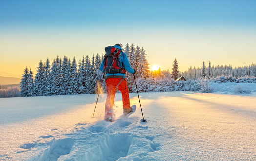 istock Snowshoe walker running in powder snow 643018240