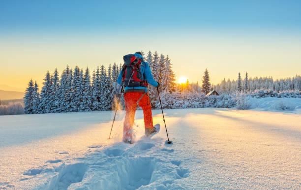 walker en raquettes dans la neige poudreuse - raquette photos et images de collection