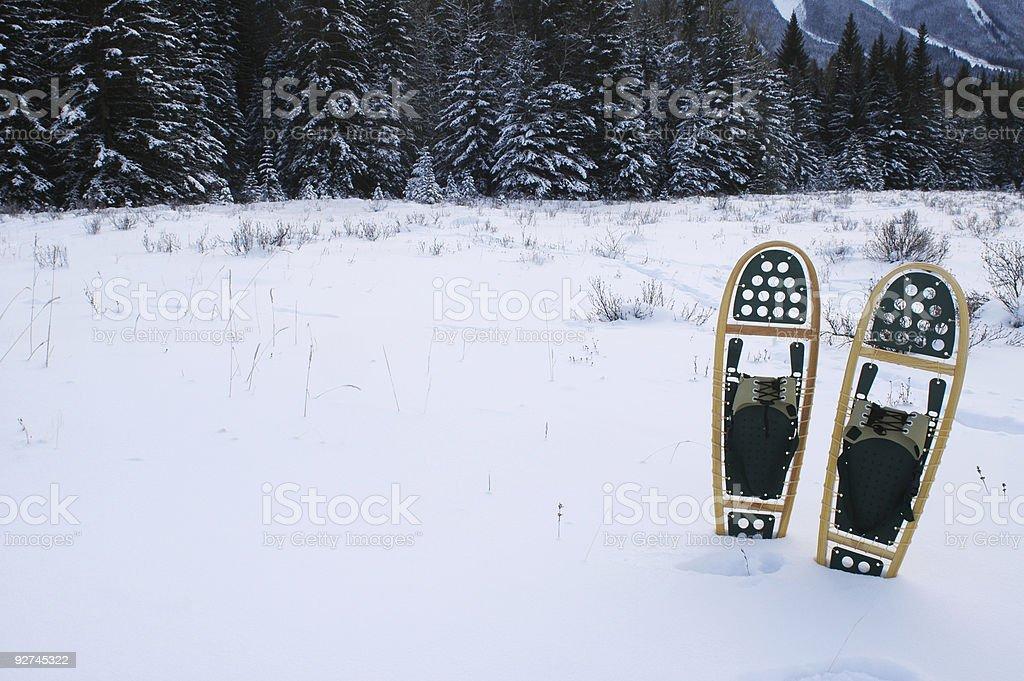 Schneeschuhwanderungen in den Bergen Lizenzfreies stock-foto