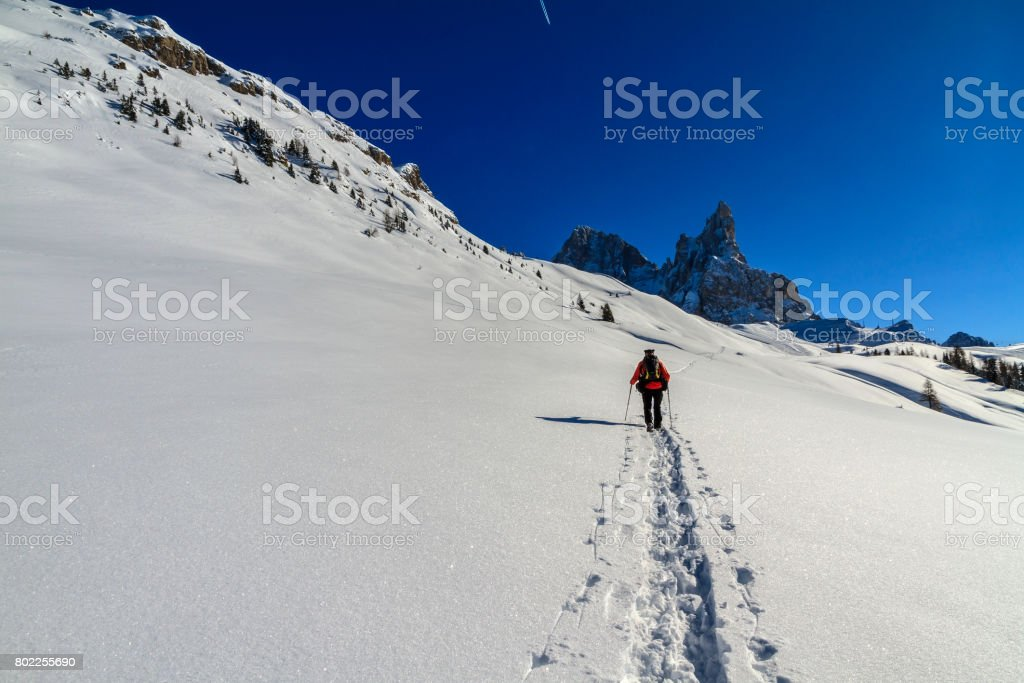 Snowshoeing in the Pale di San Martino Natural Park in winter, Italy stock photo