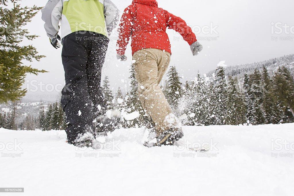 snowshoeing. stock photo