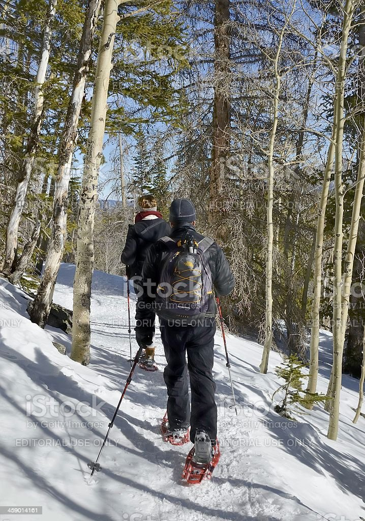 Snowshoeing, Rocky Mountain National Park royalty-free stock photo