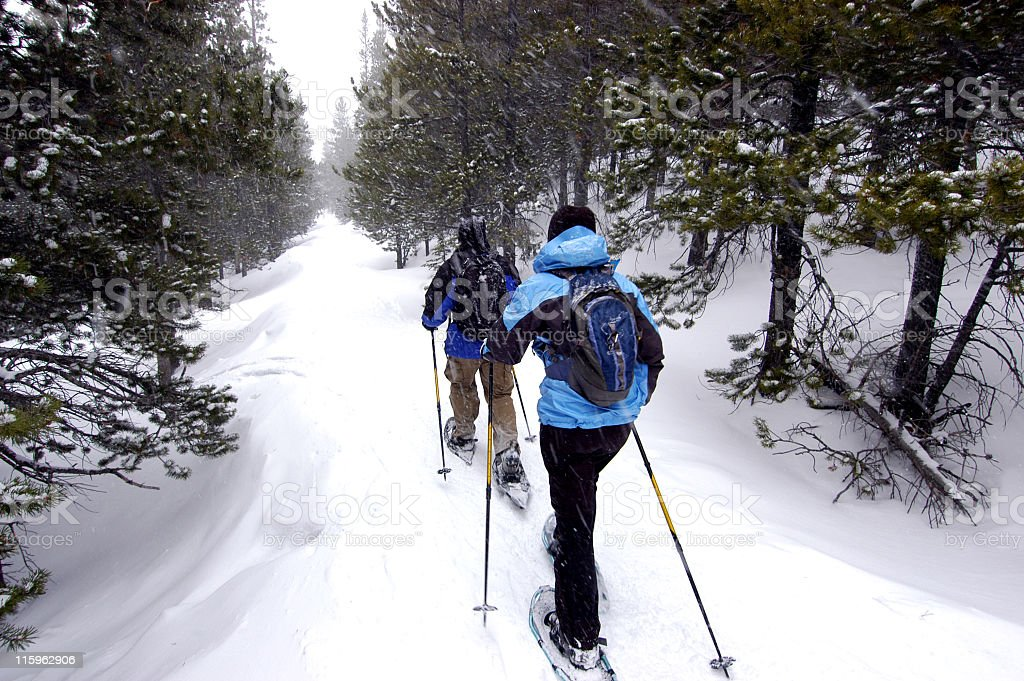Snowshoeing through a trail in a forest stock photo