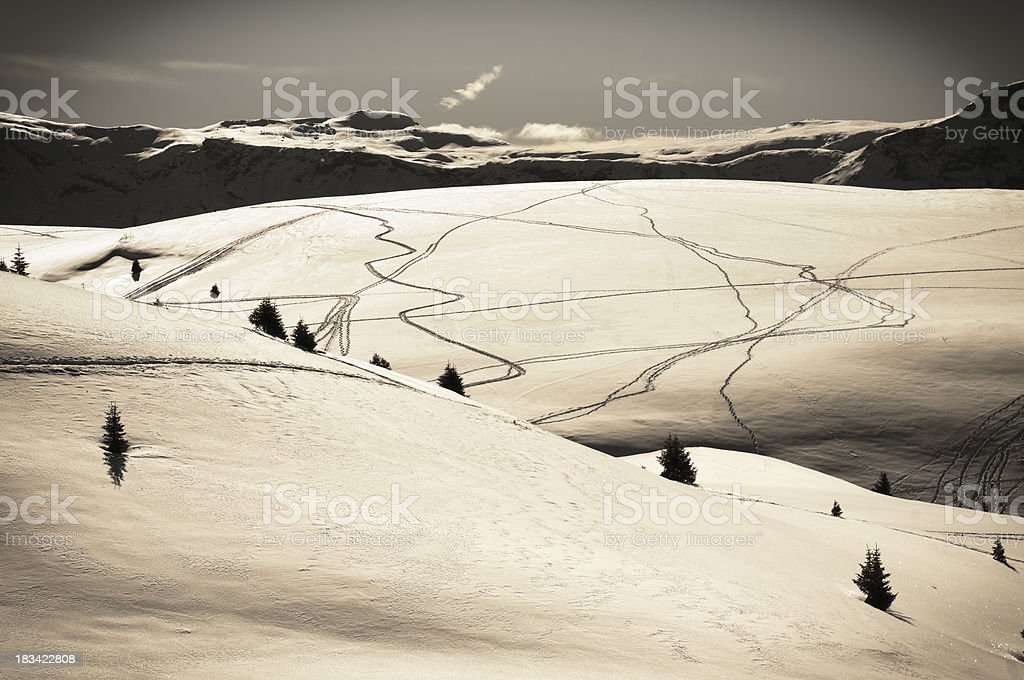 Snowshoeing trails in the Alps royalty-free stock photo