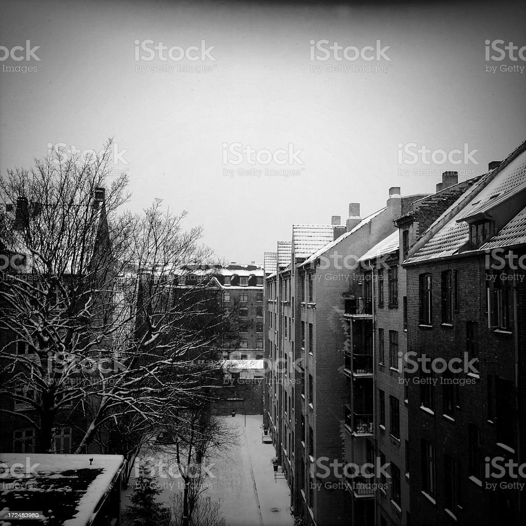Snowy Backyard royalty-free stock photo