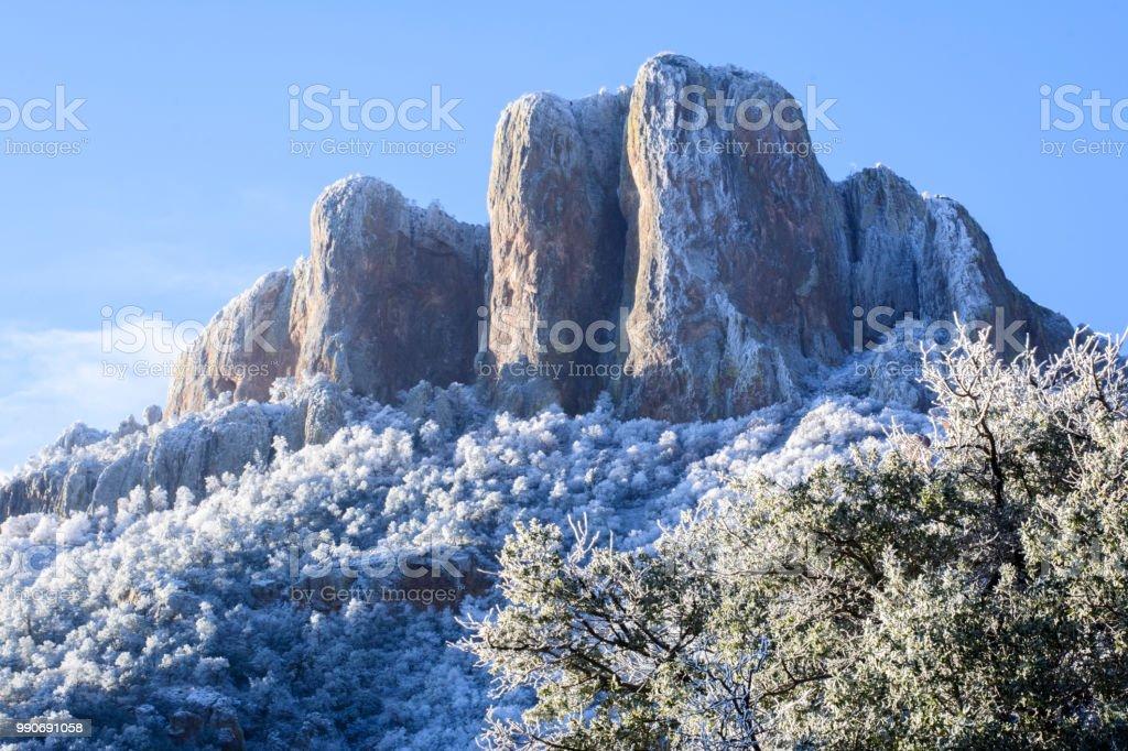 Snowy Big Bend Park stock photo