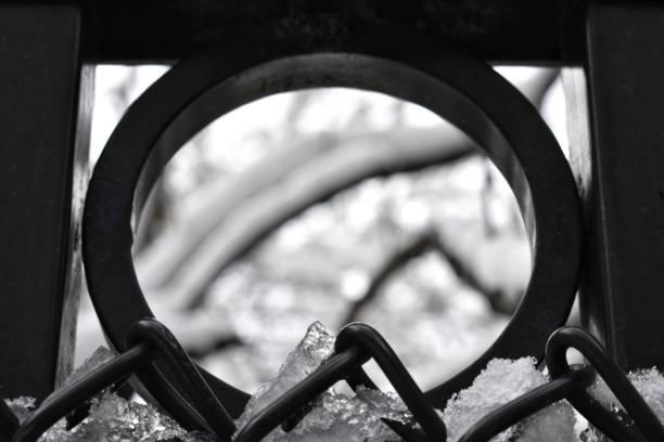 Snowy Branches through a Circle stock photo