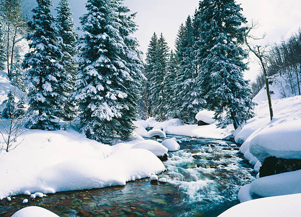 2 780 Lake Tahoe Winter Stock Photos Pictures Royalty Free Images Istock