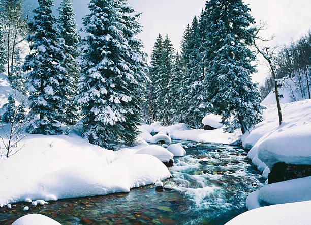 schneebedeckten cascade creek in lake tahoe, california - lake tahoe winter stock-fotos und bilder