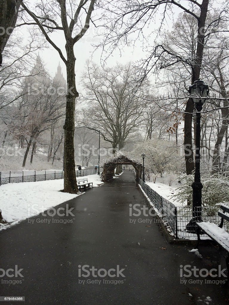 Snowy Central Park royalty-free stock photo