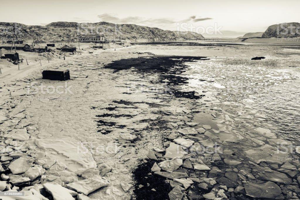Snowy coast of Barents Sea in Teriberka, Murmansk Region, Russia foto de stock royalty-free