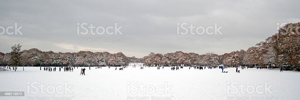 Snowy Common stock photo
