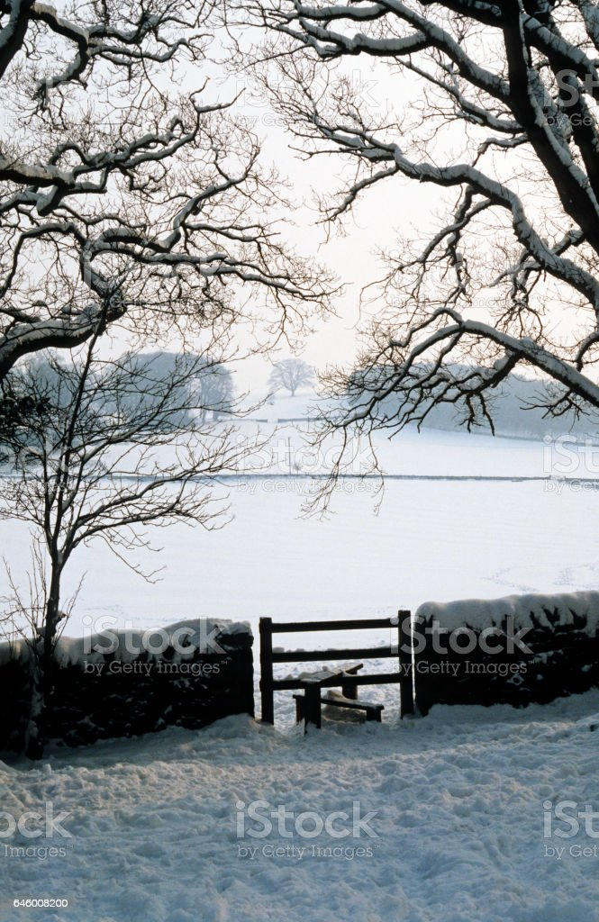 Snowy Country Scene With Trees Stile And Stone Wall Stock Photo